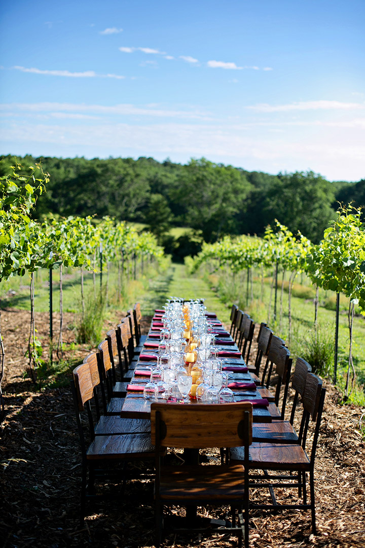 Dinner in the Vineyard Setting