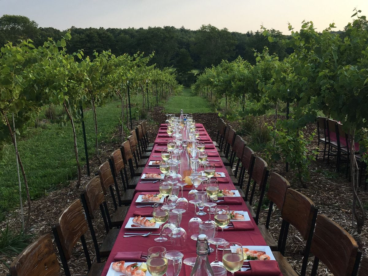 Join us for a special Dinner in the Vineyard  with Guest Chef Rick Defilippis from Bovino's Brewery  Beginning at 6:30 PM.  Each course will be paired with a  Mountain View Vineyard wine.  Menu Details to follow!